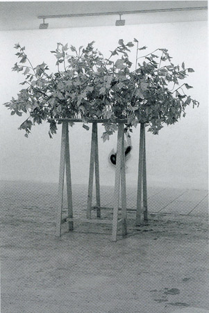Virginie Delannoy, artiste en résidence en 1997, Pollen