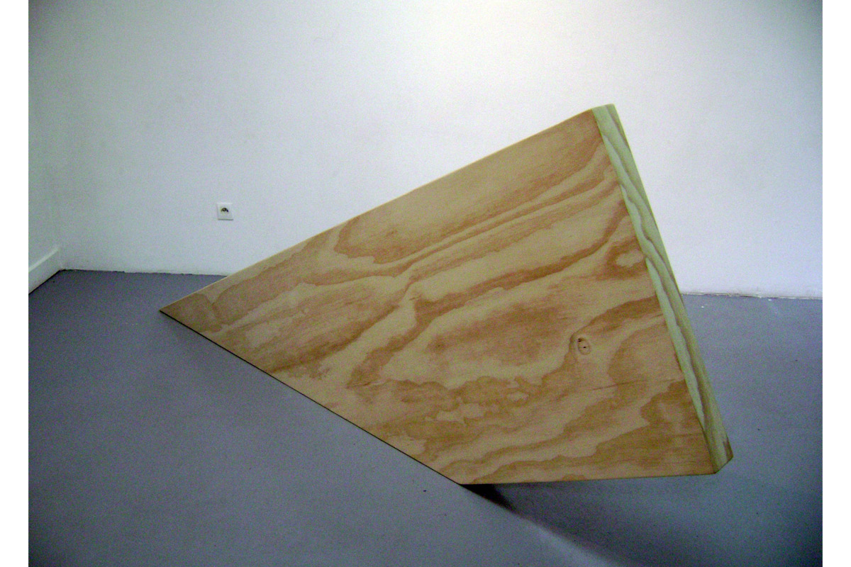 Benoit Ménard, exposition à Pollen, 2009
